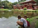 The Byodo-In Temple, рыбы и дети